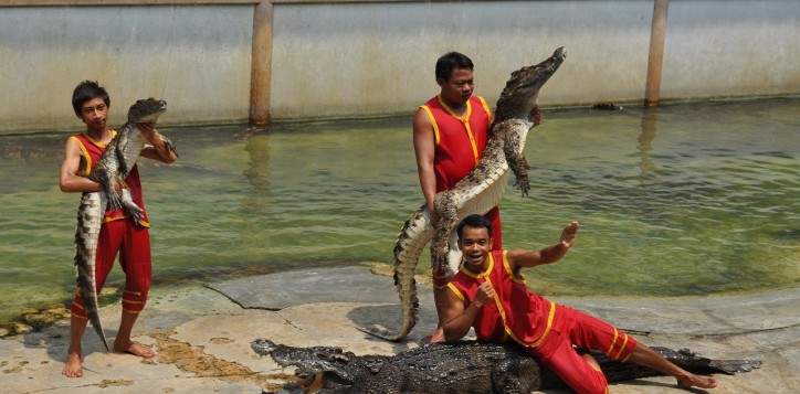 26-samuth-prakan-crocodile-farm-and-zoo-2